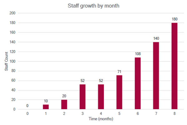 vee-technologies-whitepapaers-staff-growth-by-month